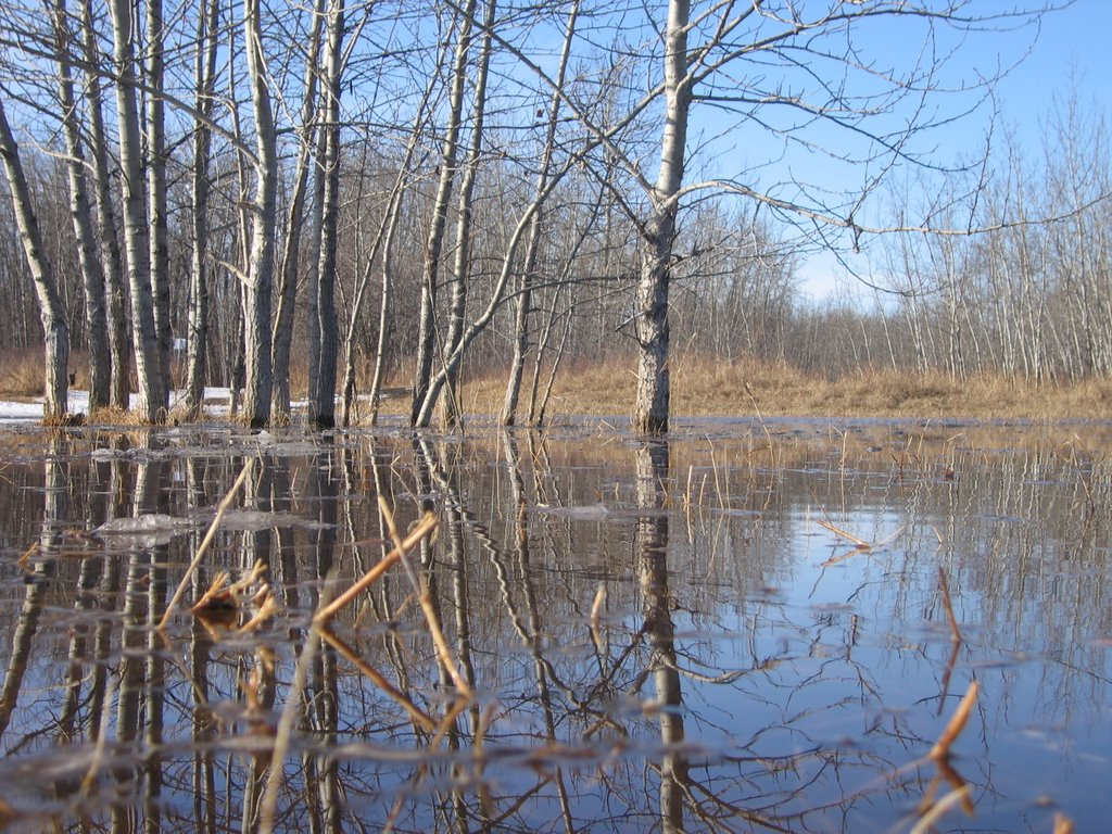 Watershed Conditions Statement – April4, 2017 Event 3 Bulletin 2