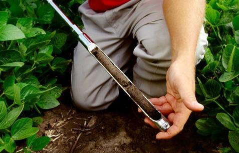 Soil Test Clinic